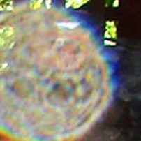 """light energy being &/or """"orb"""" with each face light"""