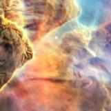 nebula face & form multiple 3 flip