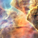 nebula face & form multiple 3