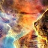 nebula face & form multiple light flip & rotate