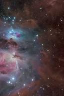 Orion bear face multiple wave flip