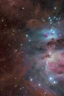 Orion bear face multiple wave