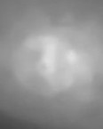 non-color cranuim with face within space